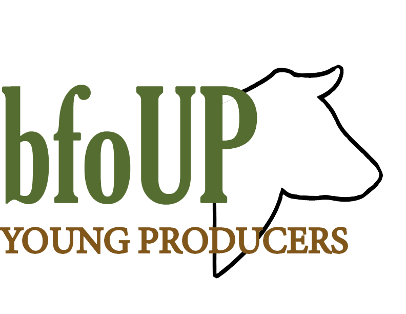 bfoUP Young Producer logo